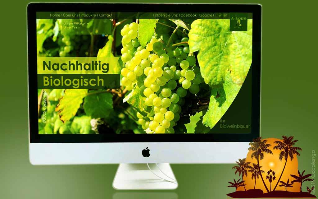 Webdesign, Webseite, Firmenhomepage, Webseite, Cocolango
